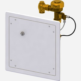 Ligature Resistant Access Panel with Hydraulic Flush Valve