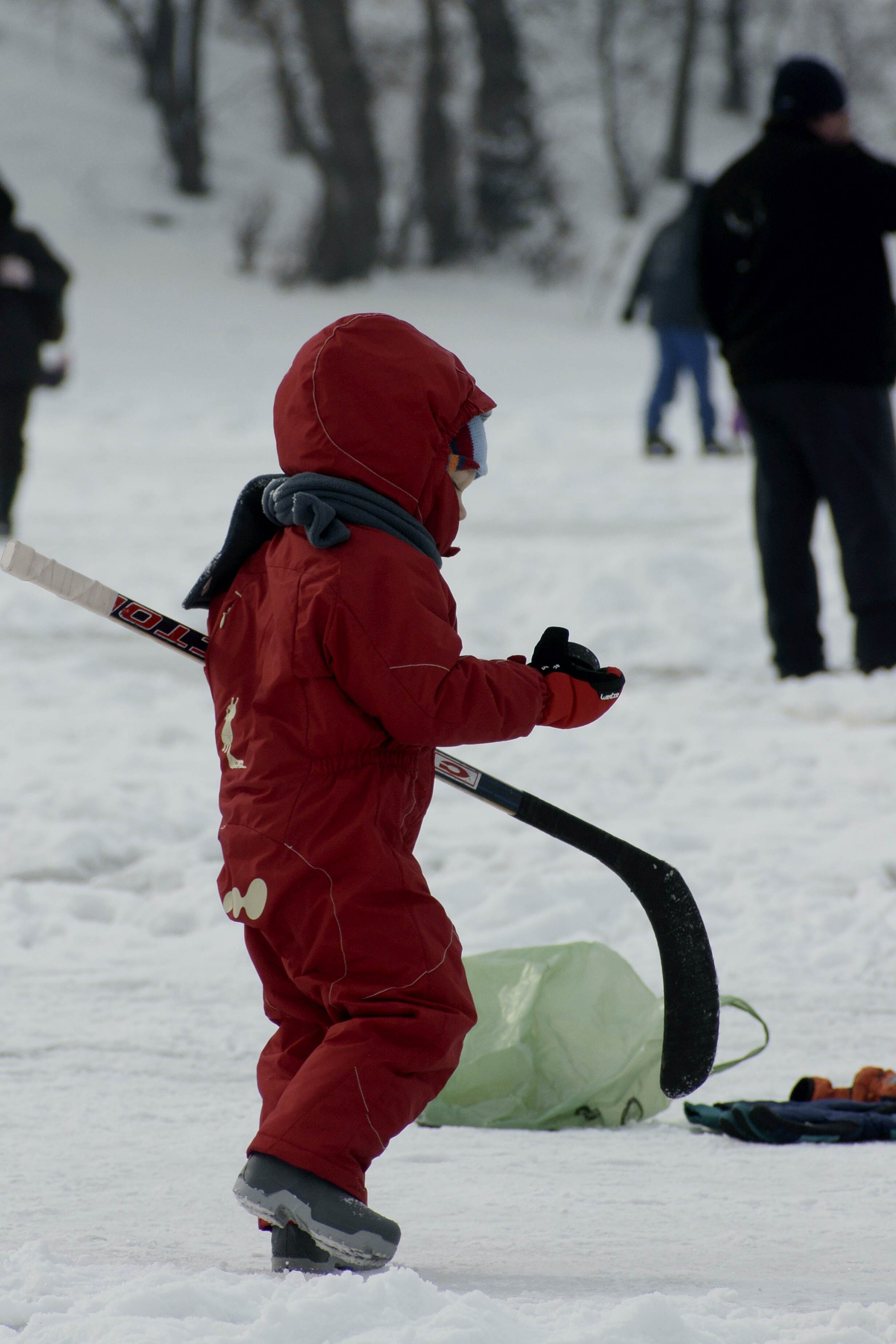 Young child playing ice hockey. Photo by Karpati Gabor